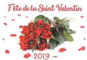 Fête de la Saint Valentin @ Village + Sale des fêtes